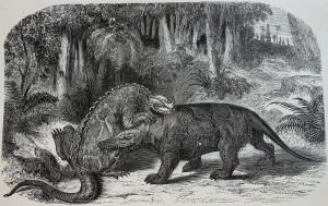 Original Iguanodon vs Megalosaurus
