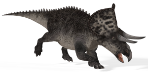 Transparent Zuniceratops