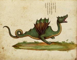 Aldrovandus' Winged Dragon of Ethiopia3