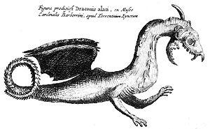 Athanasius Kircher Flying Draconis