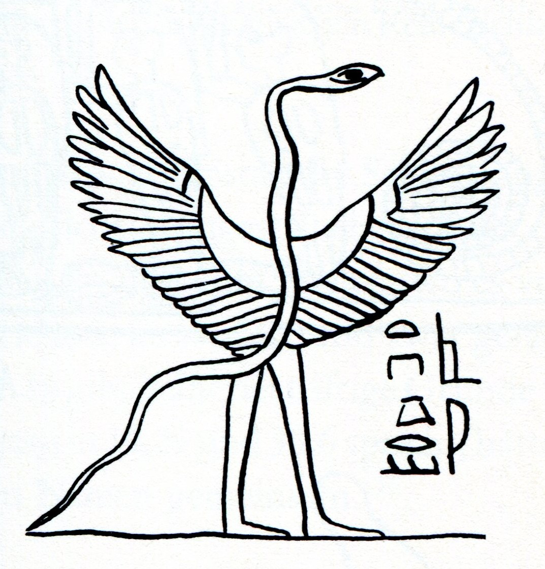 Ancient pterosaur depictions genesis park flying serpent images egyptian from jahwe visionen p 77 biocorpaavc