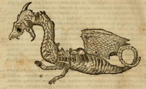 Johannes Faber 1651 Decaying Dragon2