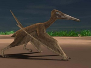 Pterodactyl walking